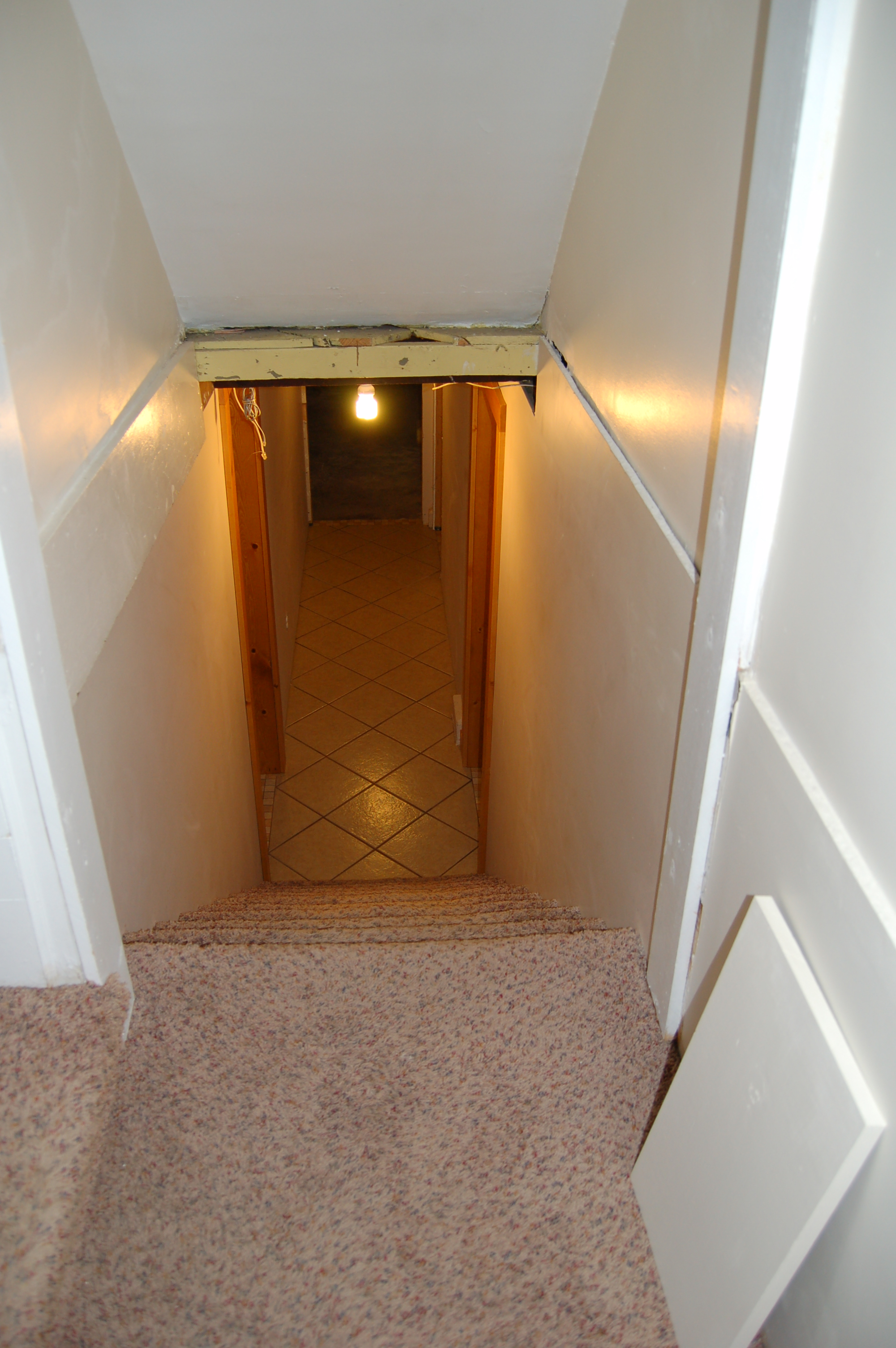 Looking Downstairs into Basement